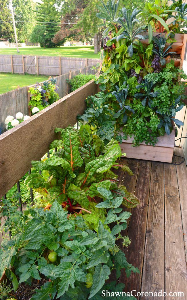 116 best Living Wall Garden Ideas images on Pinterest | Vertical ...