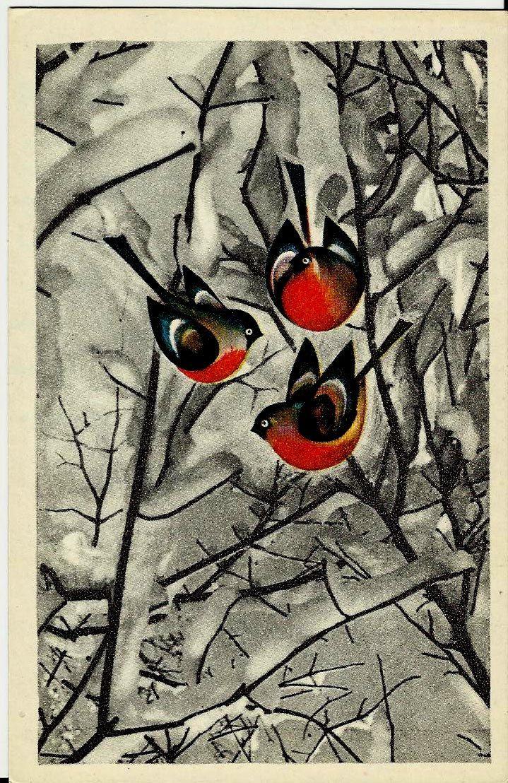 Birds, Winter, Vintage Russian Postcard print 1973 by LucyMarket on Etsy