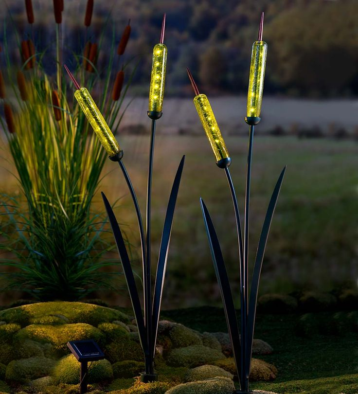 Our Cattail Stake is a sculpture and light all in one! Graceful metal cattail leaves and stems are topped with two glass pods illuminated by amber lights at dark. Place the remote solar panel in full sun and watch the show. This solar-powered yard sculpture looks great day and night in a flowerbed or garden path.