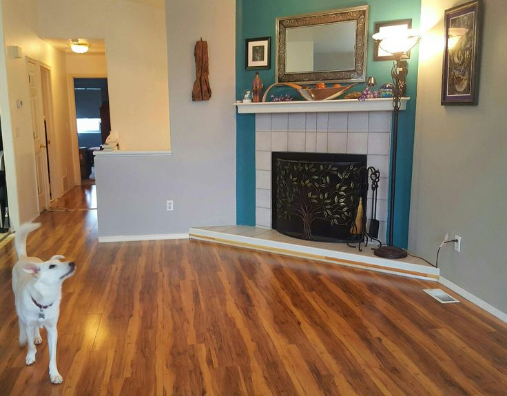 24 Best Flooring Images On Pinterest Flooring Floors