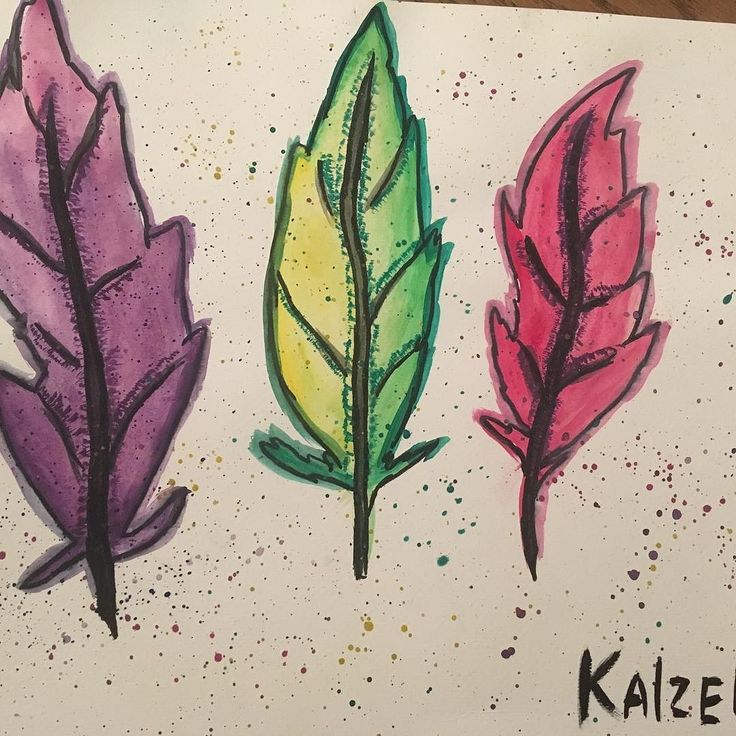 Pretty much my first experience with watercolors  #illustrator #kaizerart #ilustration #watercolor #painting #drawings #leaves #feathers