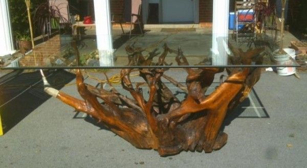 Tree Roots Make Great Coffee Tables Home Sweet Home Pinterest