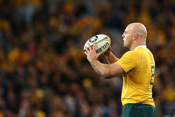 Stephen Moore Photos Photos - Stephen Moore of the Wallabies prepares for a line out during the Bledisloe Cup Rugby Championship match between the Australian Wallabies and the New Zealand All Blacks at ANZ Stadium on August 20, 2016 in Sydney, Australia. - Australia v New Zealand