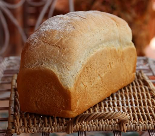 Forum Thermomix - The best Thermomix recipes and community - Sour Cream Sandwich Loaf - adapted from a Dan Lepard recipe