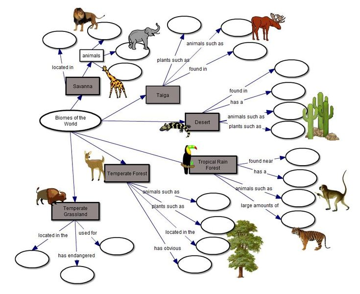 Biome Concept Map Fill In The Blank Biomes Concept Map Science Biology