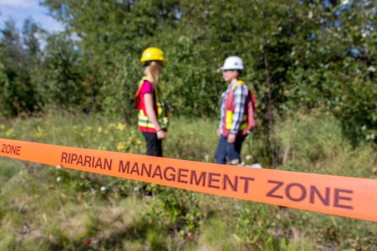 Getting an Environmental Monitoring Certificate - Why take an online course?