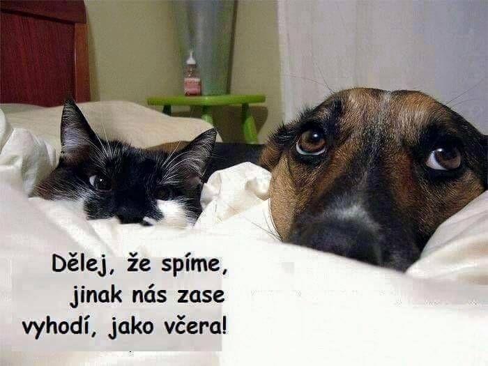 dělej, že spíme…