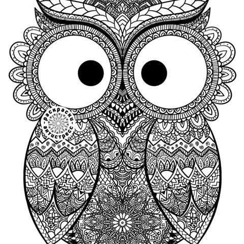 Картинки по запросу антистресс раскраска сова | Раскраски ...