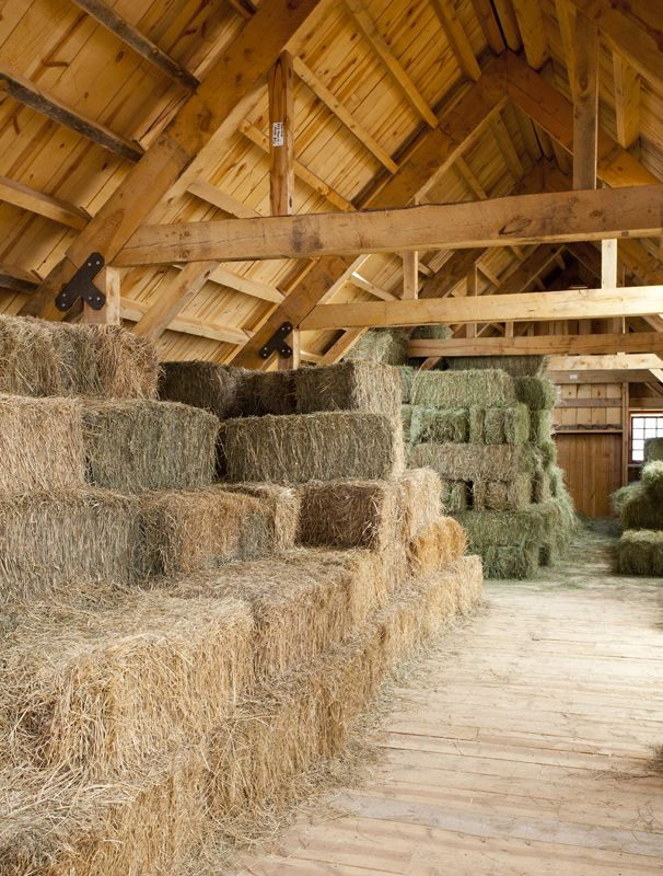 Hay Loft in an Great Plains Eastern Horse Barn  www.sandcreekpostandbeam.com https://www.facebook.com/pages/Sand-Creek-Post-Beam-Traditional-Post-Beam-Barn-Kits/66631959179
