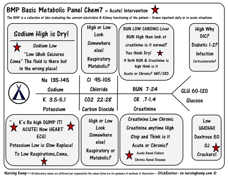 bmp basic metabolic panel | pgi stuff | pinterest, Skeleton