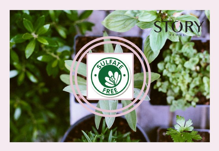 Sulfate / Sulphate free skincare by Story Seoul.  Learn reasons why....