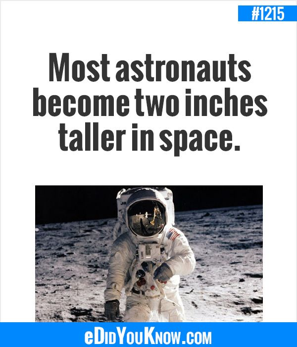 EDidYouKnow.com Most Astronauts Become Two Inches Taller