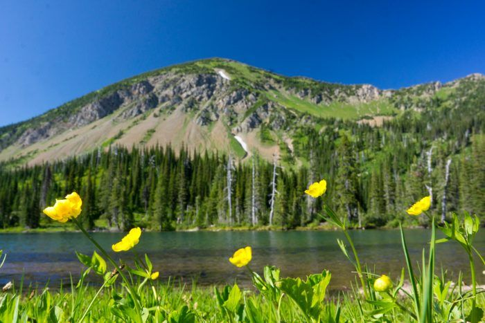 11+Trails+In+Montana+You+Must+Take+If+You+Love+The+Outdoors
