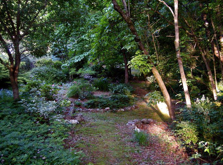 Woodland Garden Design Garden Design Ideas