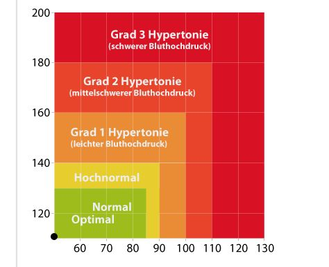 Blutdruckwerte Online auswerten