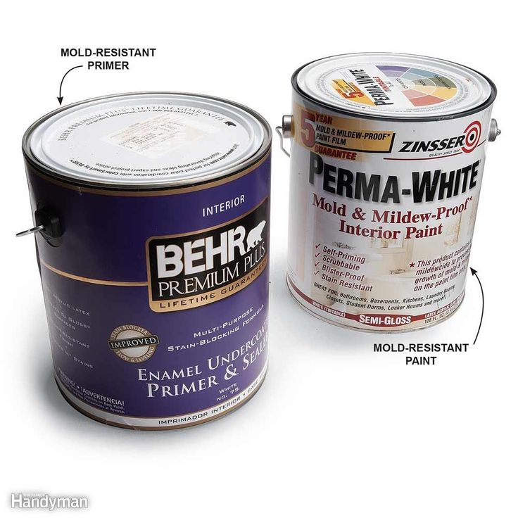Use Paint With Mildewcide - In areas where mold might grow, such as basement walls, spray the surfaces with an antimicrobial treatment. Paint walls with mildew-resistant primer and paint or add mildewcide to your paint.
