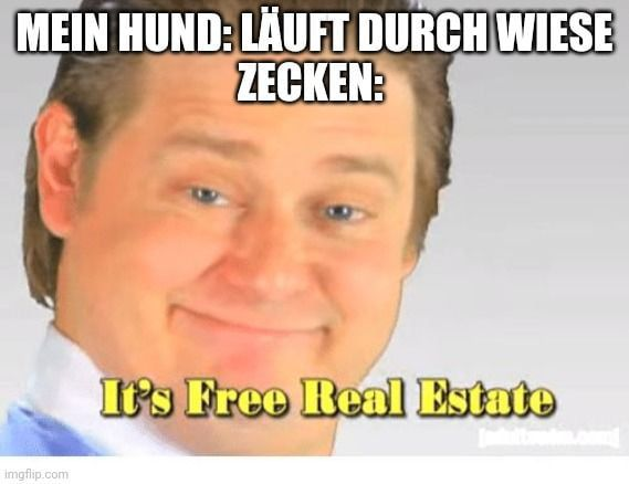 Immer Wieder Really Funny Memes Funny Profile Pictures Really Funny