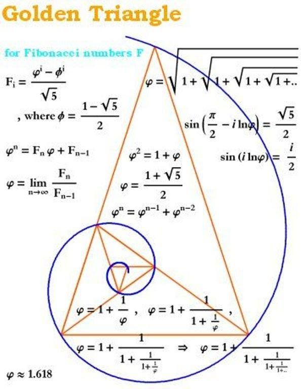 151 Best Images About Fibonacci And Golden Rule On