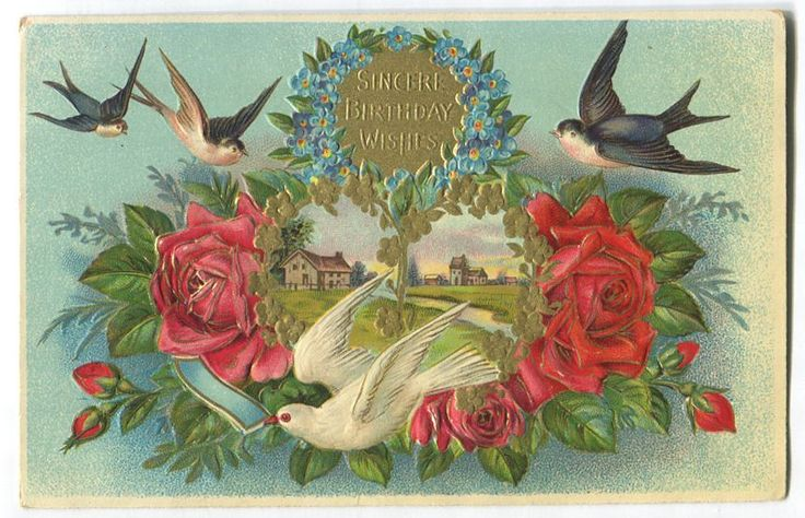 1910's AMB Illustrated, Embossed Multicoloured Birthday Postcard VF-78