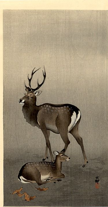 Stag and Recumbent Doe  Artist: Ohara Koson