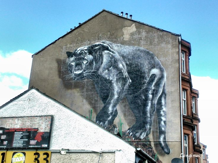 Panther by Art Pistol  That's how I felt today...dark and deadly...grrrrrrrr...  #streetart  #Glasgow #Scotland