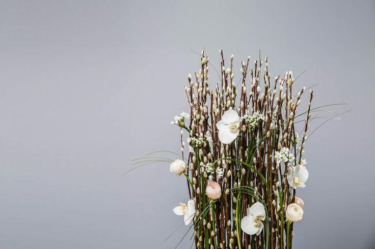 2015.1월 세째주 #플라워레슨  취미 고급반 수업작품 입니다. 공간장식! 늘 꽂던 화려한 꽃을 벗어나 심플하지만 특정공간을 장식할수있는 디자인수업 이였습니다.   _왕버들 _흰호접 _라넌큘러스 하노이 _스틸그라스 _알륨 호아니  #거제도꽃집피오니  #florist 황유기 #꽃스타그램