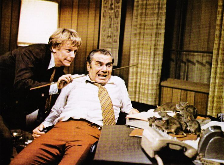 Rats! At least 8 or more of them scaring Ernest Borgnine and master of the rats Bruce Davison in WILLARD 1971