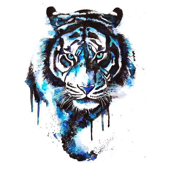 Blue Watercolor Tiger Tattoo Design More