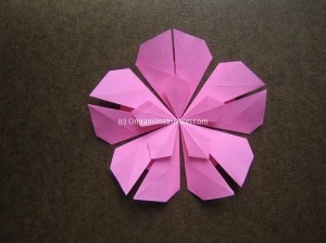 Origami Five Petals Flower Step 23