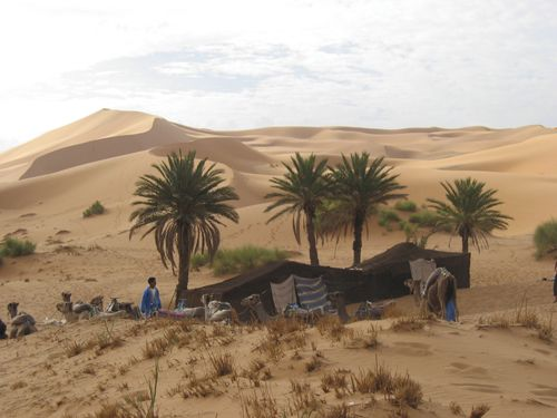 People Living in the Desert | How Do the Five Themes of ... Oasis Geography