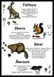 Där marken är mjuk kan man ibland hitta spår efter olika djur om man tittar noga. Lär dig om hur olika djurs spår ser ut i Lilla spårboken.