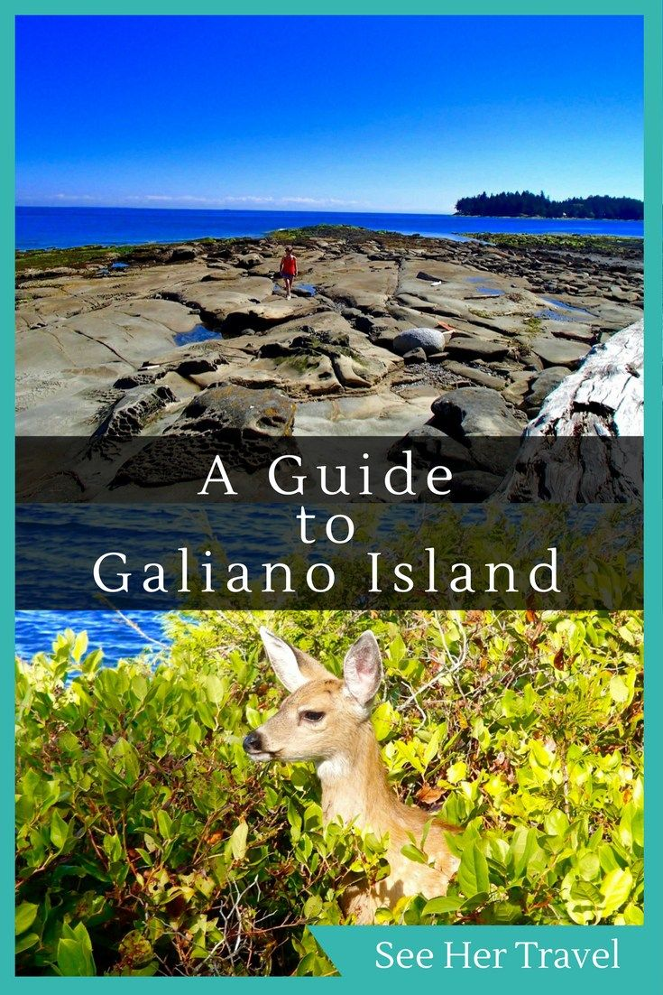 A Guide to BC's Galiano Island | #galianoisland #britishcolumbia #canadatravel #BCtravelblog #galianoislandbc | canada travel tips | british columbia travel tips | british columbia getaways | galiano island getaway | british columbia travel blog | western canada travel
