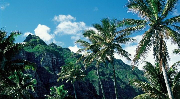 Why cruise Hawaii with Norwegian? There are at least eleven good reasons!  Image:  Oahu/NCL  Click here: http://www.journeysnearandfar.com/romance/11-reasons-to-cruise-hawaii-with-norwegian-cruise-lines/