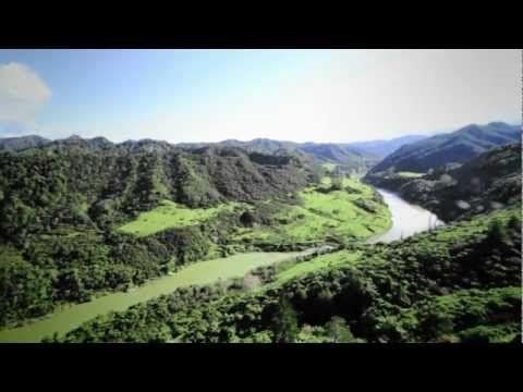 Explore the Whanganui River - Visit Whanganui