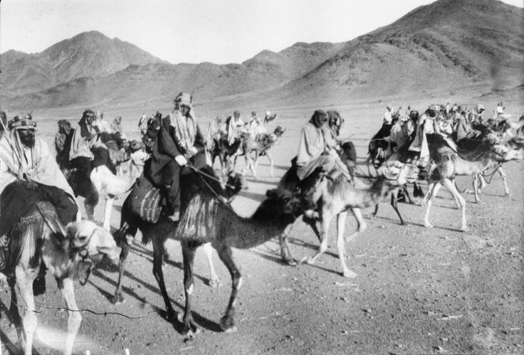 T E LAWRENCE ARAB REVOLT 1916 - 1918 (Q 58939)   Sherif Sharraf and camel mounted Arab troops on the march in the desert near Jebel Serd.