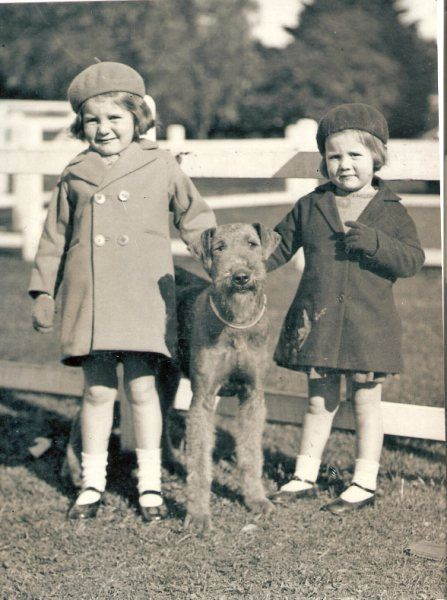 little girls pose with Airedale c.1940's
