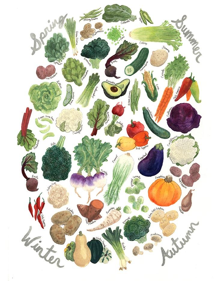 veg seasonality; by melinda boyce