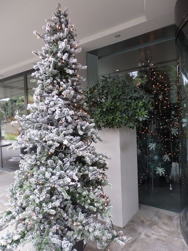 Let it snow this Christmas! #white_christmas #snowy_tree #lifegalleryathens