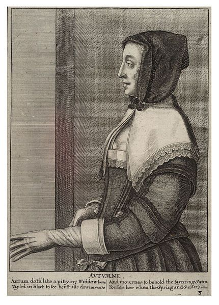 Artist  Wenceslaus Hollar (1607–1677) Link back to Creator infobox template wikidata:Q448555 Title Autumn. State 2. Date Unknown date (author lived 1607-1677) Dimensions 25 x 18 cm. Current location  Thomas Fisher Rare Book Library Link back to Institution infobox template wikidata:Q7789602 Wenceslas Hollar Digital Collection Accession number Plate number: P612.