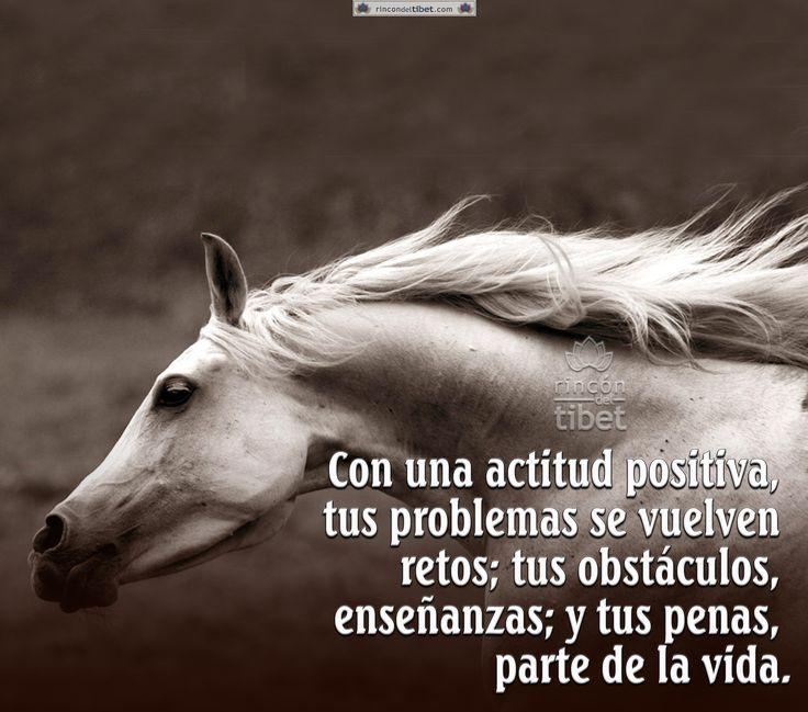 Con una actitud positiva, tus problemas se vuelven retos