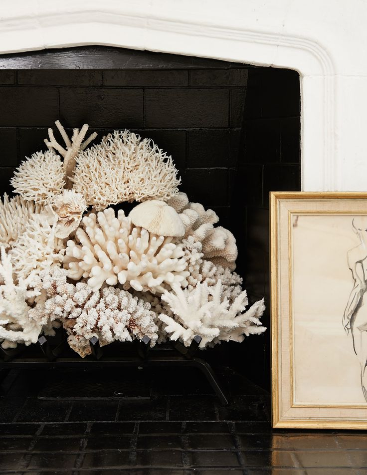 """""""To make a nonworking fireplace really sing, all you need to do is fill it with an exceptionally beautiful object. I often rely on lush green plants, like a fern, or in this case, a standout collection of coral. Better still, frame it with a high-contrast interior paint color...and a chic piece of leaning art never hurts."""" —Mark D. Sikes"""