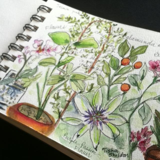 Watercolor garden journal entry, Tisha Sheldon