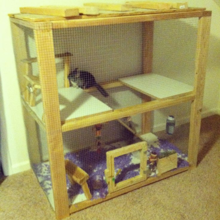 49 best images about Chinchilla cage and toy ideas on ...