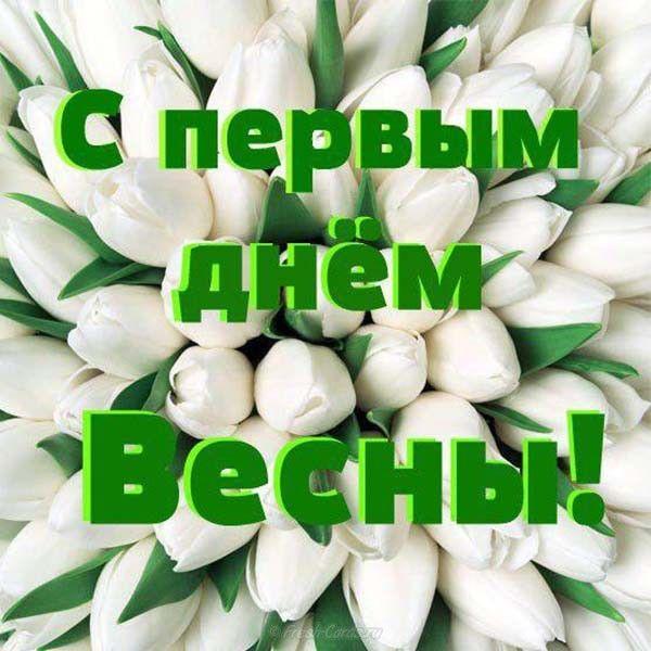 Картинки девушек, открытки 1 марта день весны прикольные