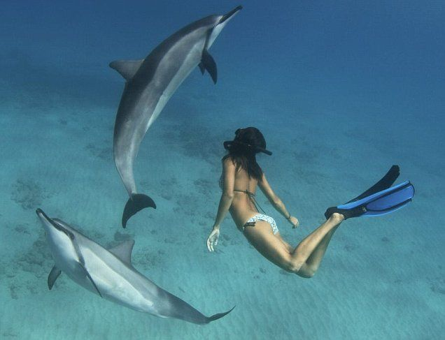 Leina Sato - the lady who dances with dolphins in Hawaii