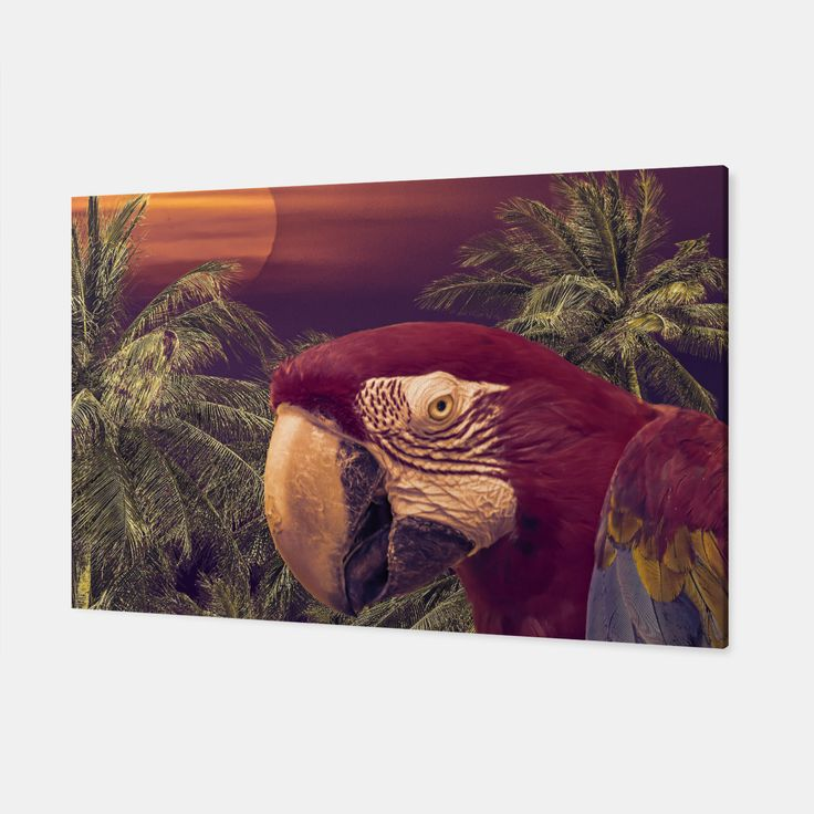 Tropical Style Collage Design Poster Canvas, Live Heroes