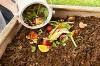 Compost : pourquoi et comment le réaliser ? (Fiches conseils)