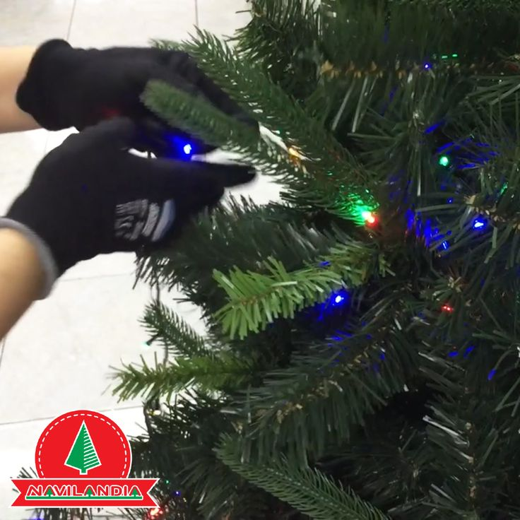 Rama por Rama, es la segunda técnica que Mariset recomienda en nuestro canal de YouTube para poner las extensiones de luces al Árbol de Navidad, conoce cómo hacerla en https://www.youtube.com/watch?v=UYTMSjGXNYE&feature=youtu.be&utm_content=bufferdf50b&utm_medium=social&utm_source=pinterest.com&utm_campaign=buffer #ArbolesDeNavidadCali #ArbolesDeNavidadMedellin #ArbolesDeNavidadColombia