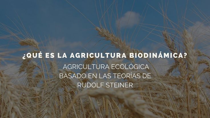¿Qué es la agricultura biodinámica? Realidad o ficción...