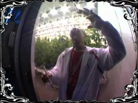 Ludacris - Blueberry Yum Yum BEST QUALITY